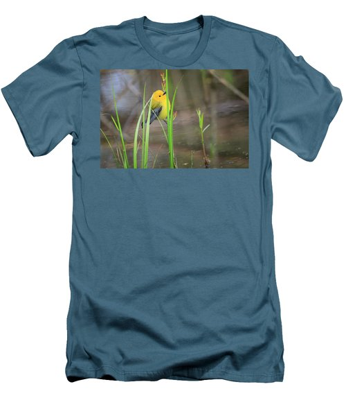 Prothonotary Warbler 5 Men's T-Shirt (Slim Fit) by Gary Hall