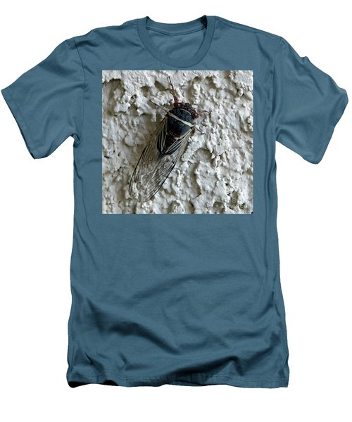 Putnam's Cicada Men's T-Shirt (Slim Fit) by Anne Rodkin
