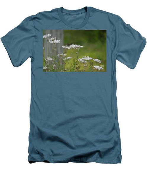 Queen Anne Lace Wildflowers Men's T-Shirt (Slim Fit) by Maria Urso