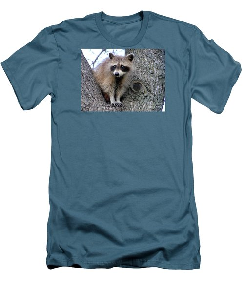 Raccoon Lookout Men's T-Shirt (Athletic Fit)