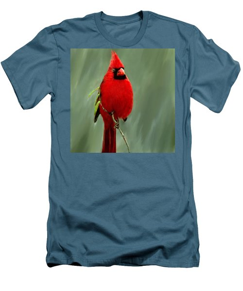 Red Cardinal Painting Men's T-Shirt (Slim Fit) by Bob and Nadine Johnston