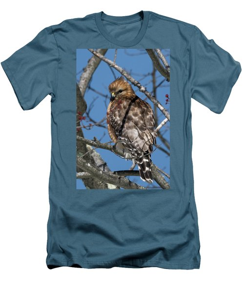 Men's T-Shirt (Slim Fit) featuring the photograph Red Shouldered Hawk 2017 by Bill Wakeley