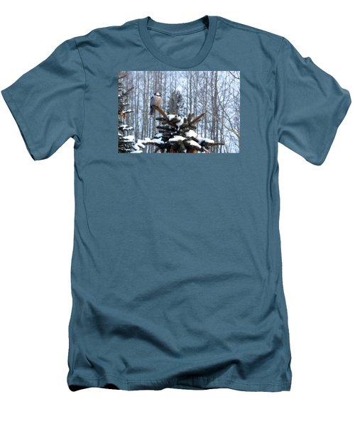 Refined Little Gray Jay In Colorado Men's T-Shirt (Slim Fit) by Carol M Highsmith