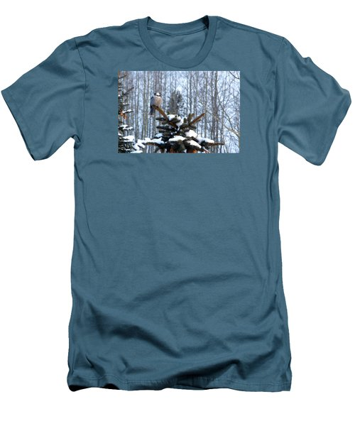 Refined Little Gray Jay In Colorado Men's T-Shirt (Athletic Fit)