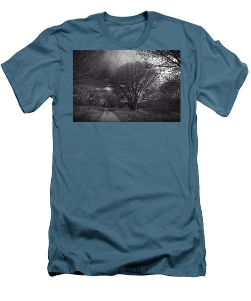 Road Through The Cottonwoods Men's T-Shirt (Athletic Fit)