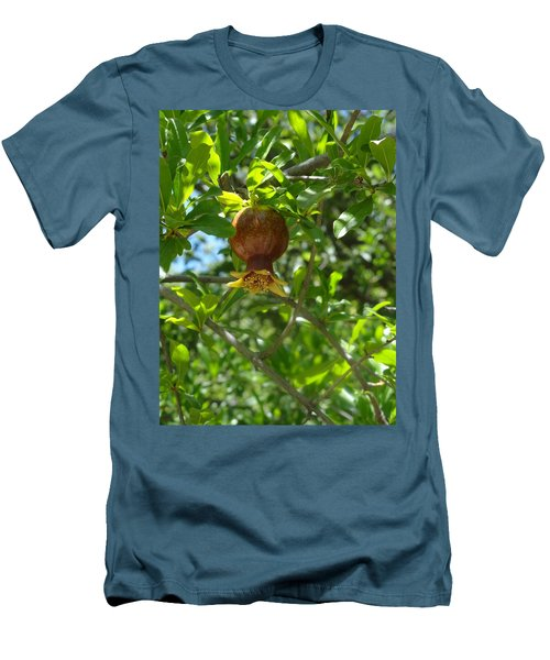 Royal Onion Pomegranate Men's T-Shirt (Athletic Fit)