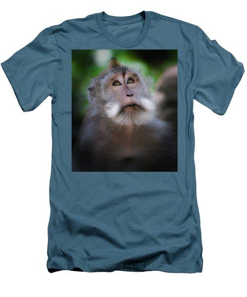 Sacred Monkey Forest Sanctuary Men's T-Shirt (Athletic Fit)