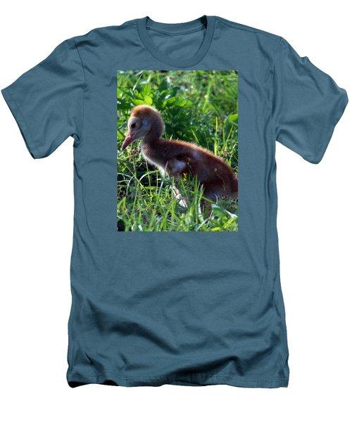 Sandhill Crane Chick 087  Men's T-Shirt (Slim Fit) by Chris Mercer