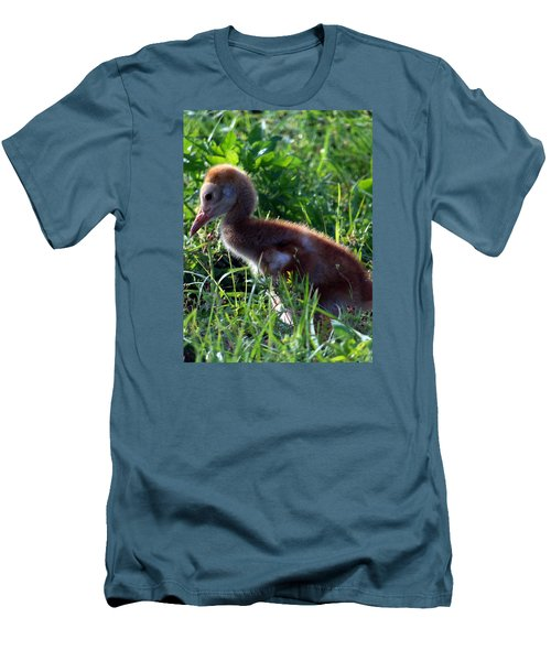 Sandhill Crane Chick 087  Men's T-Shirt (Athletic Fit)