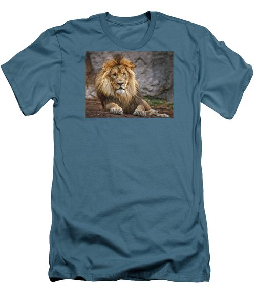 Men's T-Shirt (Slim Fit) featuring the photograph Shombay by Elaine Malott