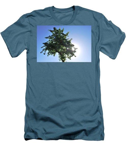 Single Tree - Sun And Blue Sky Men's T-Shirt (Slim Fit) by Matt Harang