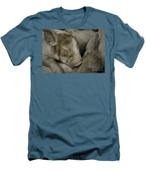 Sleeping Piglet Men's T-Shirt (Athletic Fit)