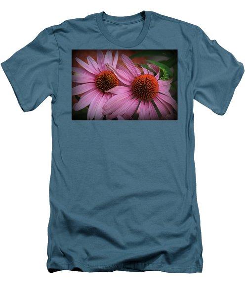 Summer Beauties - Coneflowers Men's T-Shirt (Athletic Fit)
