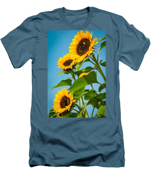 Sunflower Morning Men's T-Shirt (Athletic Fit)
