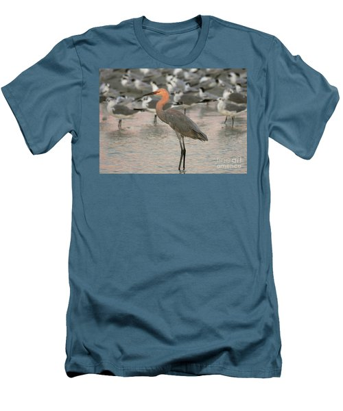 Sunlit Reddish Egret Men's T-Shirt (Slim Fit) by Myrna Bradshaw