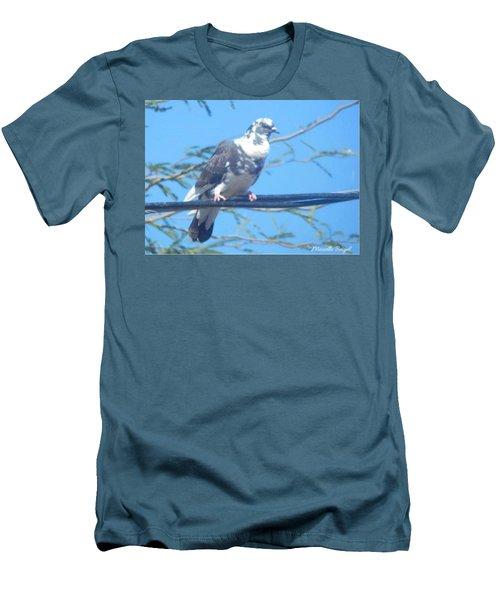Suspicious Bird Men's T-Shirt (Athletic Fit)