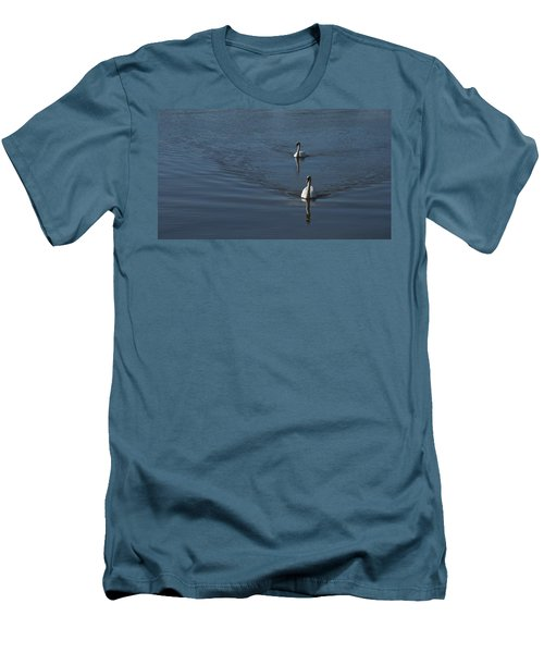 Swans On Blue Men's T-Shirt (Slim Fit) by Charles Kraus