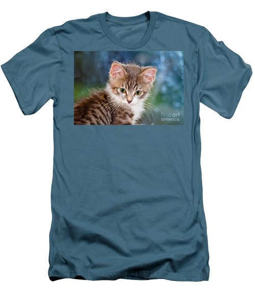 Sweet Kitten Men's T-Shirt (Athletic Fit)