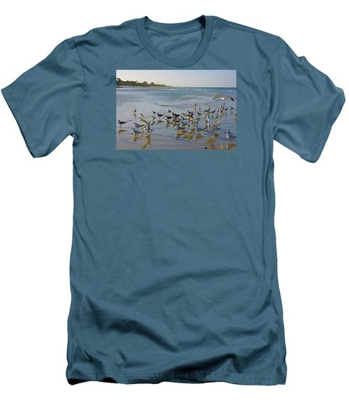 Terns And Seagulls On The Beach In Naples, Fl Men's T-Shirt (Slim Fit) by Robb Stan