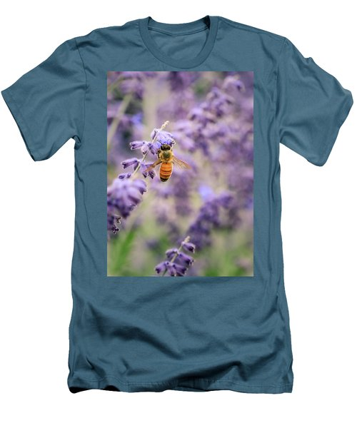 The Honey Bee And The Lavender Men's T-Shirt (Slim Fit)