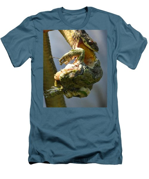 The Serpent And The Frog Men's T-Shirt (Slim Fit) by Lisa DiFruscio