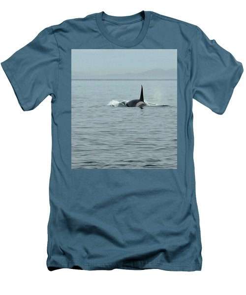 Transient Killer Whale Men's T-Shirt (Slim Fit) by Brian Chase