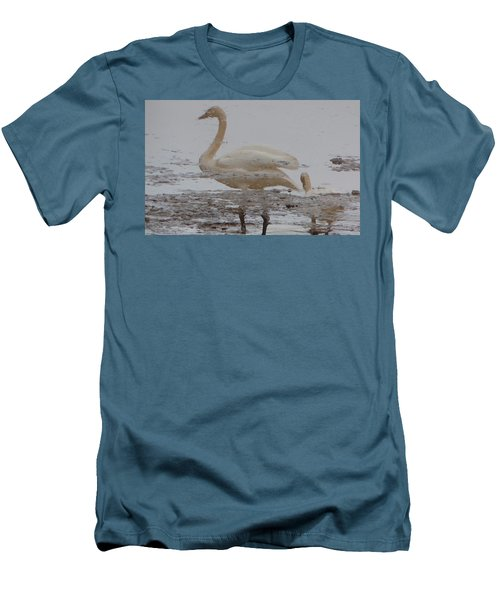 Trumpeter Swan Reflection Men's T-Shirt (Athletic Fit)