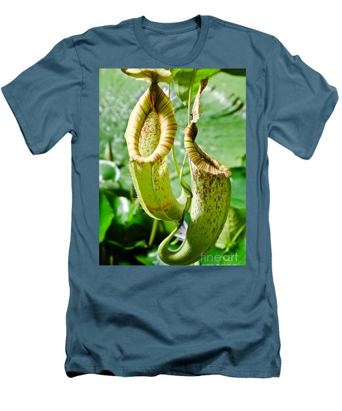 Venus Fly Catcher Men's T-Shirt (Athletic Fit)