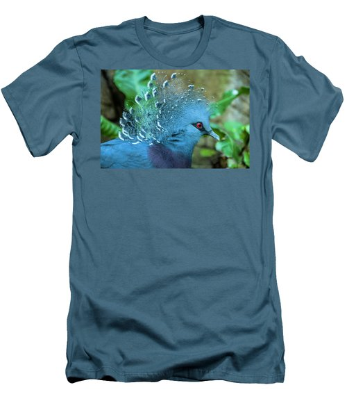 Victoria Crowned Pigeon Men's T-Shirt (Athletic Fit)