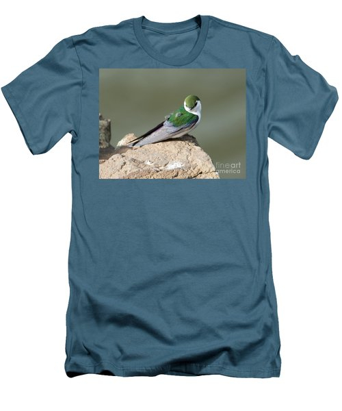 Violet-green Swallow Men's T-Shirt (Slim Fit) by Mike Dawson