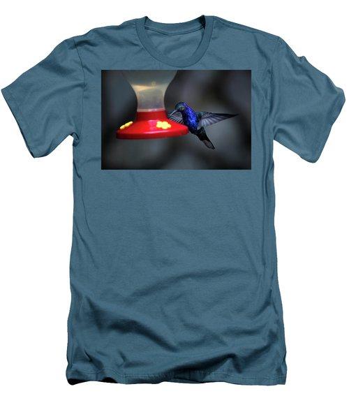 Violet Sabrewing Hummingbird Men's T-Shirt (Slim Fit) by James David Phenicie