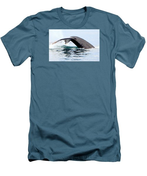 Whale Watch Moss Landing Series 24 Men's T-Shirt (Slim Fit) by Antonia Citrino