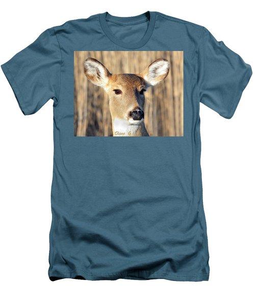 White-tailed Deer Men's T-Shirt (Slim Fit) by Diane Giurco