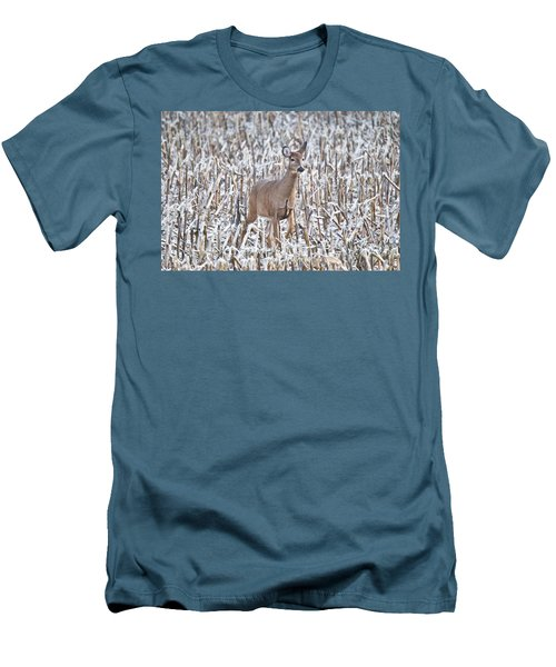 Whitetail In Frosted Corn 537 Men's T-Shirt (Athletic Fit)