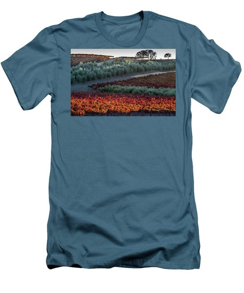 Men's T-Shirt (Slim Fit) featuring the photograph Wine Grapes And Olive Trees by Roger Mullenhour