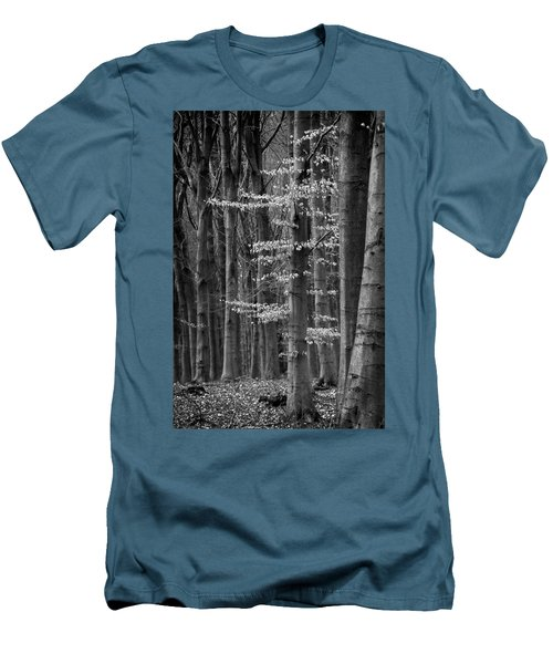 Winter Beech Men's T-Shirt (Slim Fit) by Inge Riis McDonald