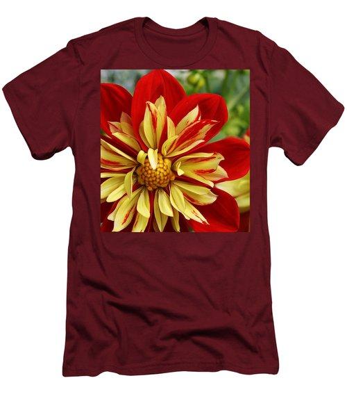 Fireworks Men's T-Shirt (Slim Fit) by Bruce Bley