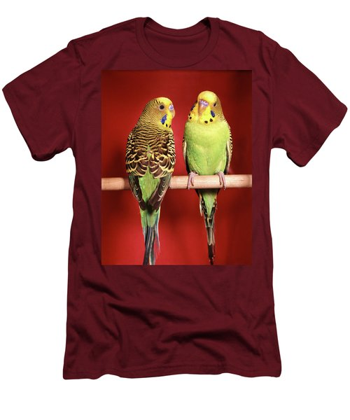 1960s Pair Of Two Yellow Green Men's T-Shirt (Athletic Fit)