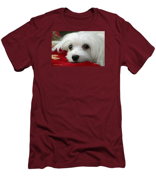 Men's T-Shirt (Slim Fit) featuring the mixed media Snowdrop The Maltese by Morag Bates