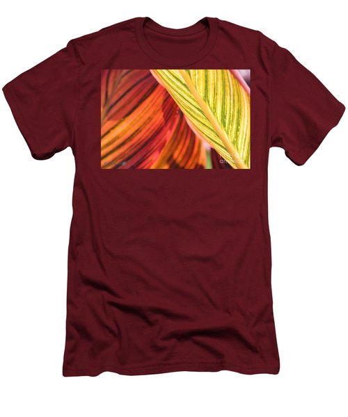 Canna Lily Named Durban Men's T-Shirt (Slim Fit) by J McCombie