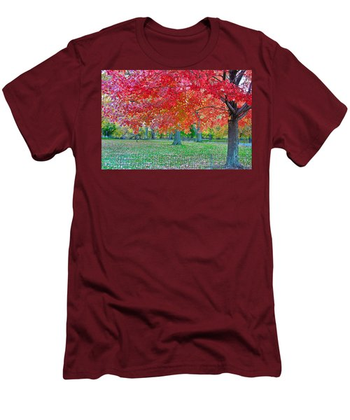 Autumn In Central Park Men's T-Shirt (Athletic Fit)