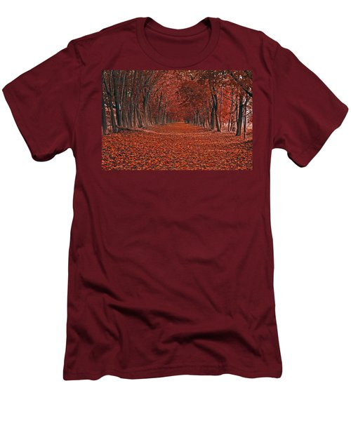 Autumn Men's T-Shirt (Slim Fit) by Raymond Salani III