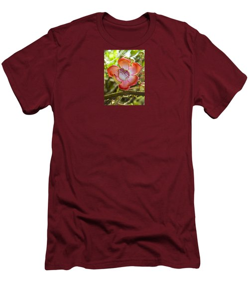 Cannonball Tree Flower Hawaii Men's T-Shirt (Slim Fit) by Venetia Featherstone-Witty