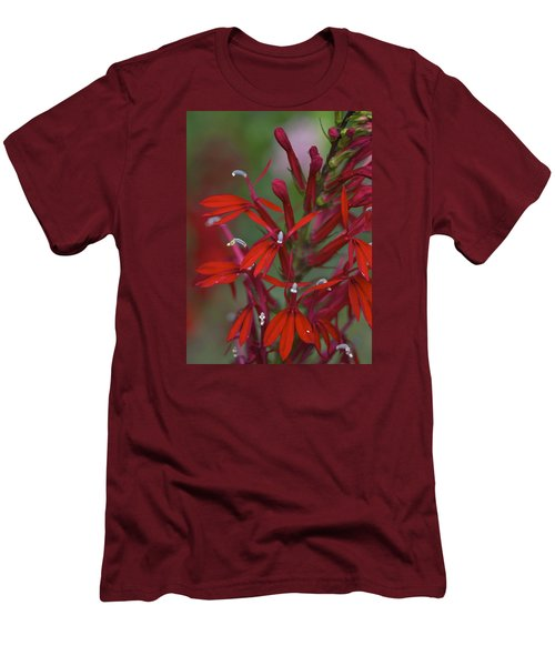 Cardinal Flower Men's T-Shirt (Slim Fit) by Jane Eleanor Nicholas
