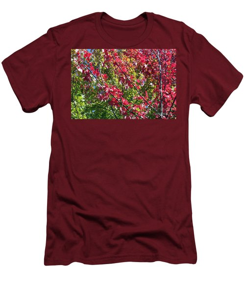Men's T-Shirt (Slim Fit) featuring the photograph Complimentary Colors by Debbie Hart