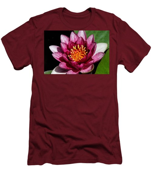 Elegant Lotus Water Lily Men's T-Shirt (Athletic Fit)