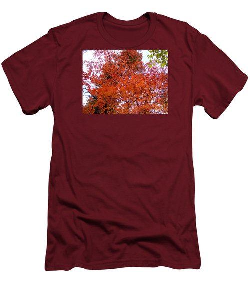 Fall Colors 6359 Men's T-Shirt (Athletic Fit)