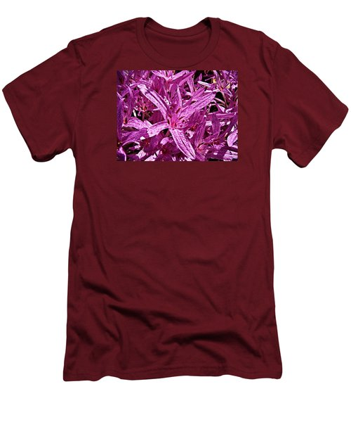 Fall Crocus Men's T-Shirt (Athletic Fit)
