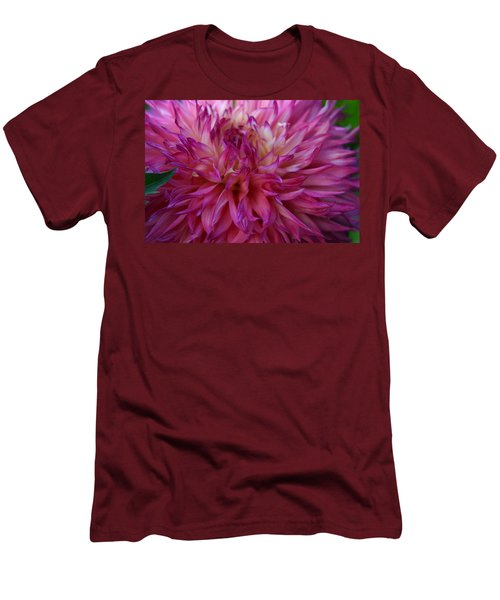 Men's T-Shirt (Slim Fit) featuring the photograph Pink And White Dahlia  by Denyse Duhaime