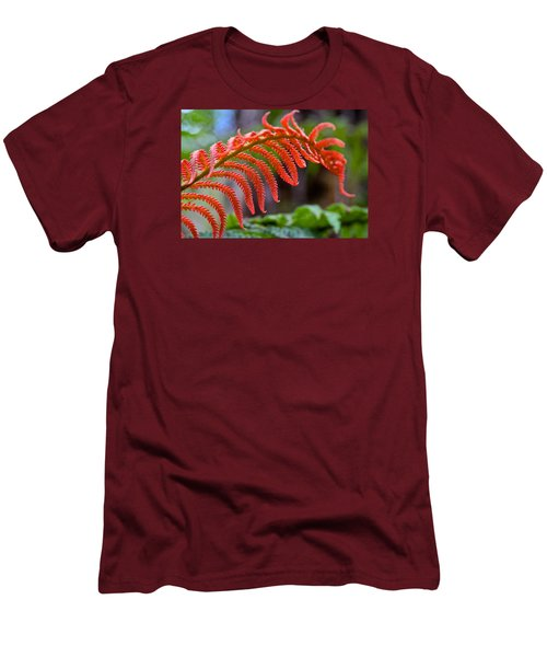 Autumn Fern In Hawaii Men's T-Shirt (Slim Fit) by Venetia Featherstone-Witty
